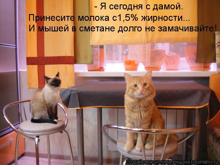 Котоматрица: - Я сегодня с дамой. И мышей в сметане долго не замачивайте! Принесите молока с1,5% жирности...