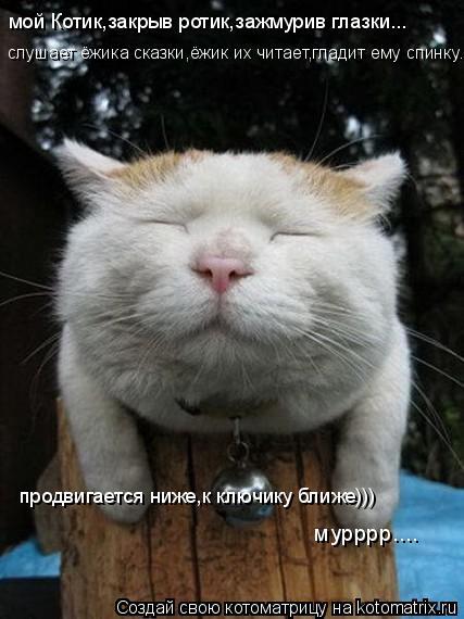 Котоматрица: мой Котик,закрыв ротик,зажмурив глазки... слушает ёжика сказки,ёжик их читает,гладит ему спинку... продвигается ниже,к ключику ближе))) мурррр