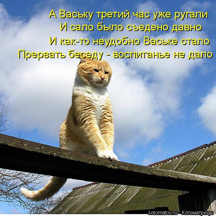 Котоматрица: И сало было съедено давно А Ваську третий час уже ругали И как-то неудобно Ваське стало Прервать беседу - воспитанье не дало