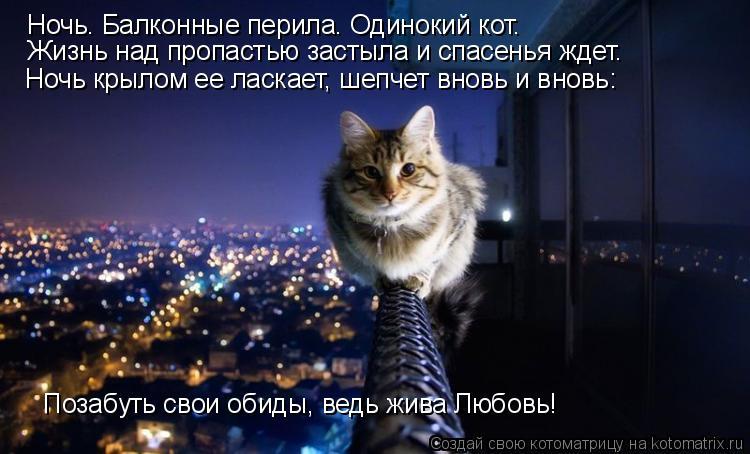 Котоматрица: Ночь. Балконные перила. Одинокий кот. Жизнь над пропастью застыла и спасенья ждет. Ночь крылом ее ласкает, шепчет вновь и вновь: Позабуть сво