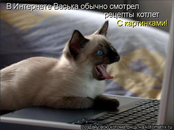 В Интернете Васька обычно смотрел рецепты котлет С картинками!