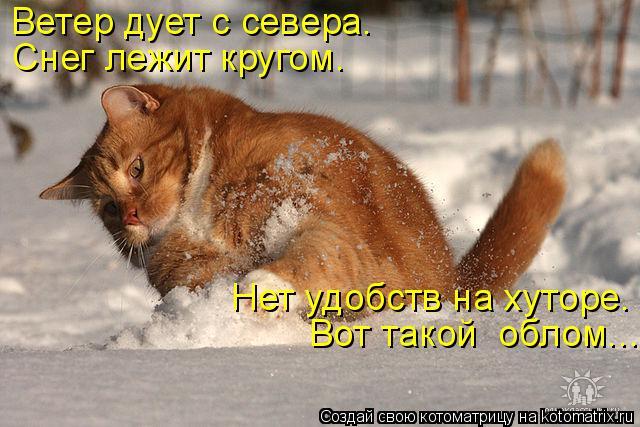 Котоматрица: Ветер дует с севера. Снег лежит кругом.  Нет удобств на хуторе.  Вот такой  облом...