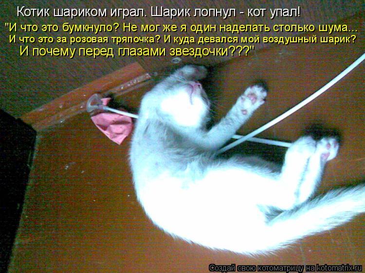 """Котоматрица: Котик шариком играл. Шарик лопнул - кот упал! """"И что это бумкнуло? Не мог же я один наделать столько шума... И что это за розовая тряпочка? И куд"""