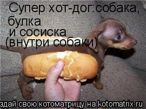 Котоматрица: Супер хот-дог:собака, булка и сосиска (внутри собаки)