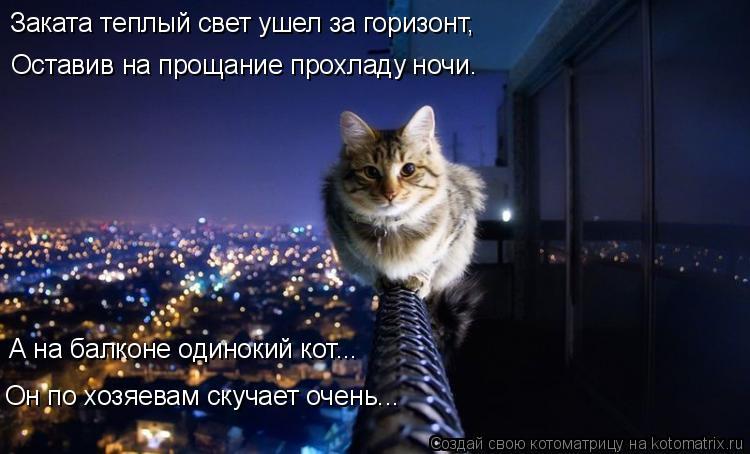 Котоматрица: Заката теплый свет ушел за горизонт, Оставив на прощание прохладу ночи. А на балконе одинокий кот... Он по хозяевам скучает очень...