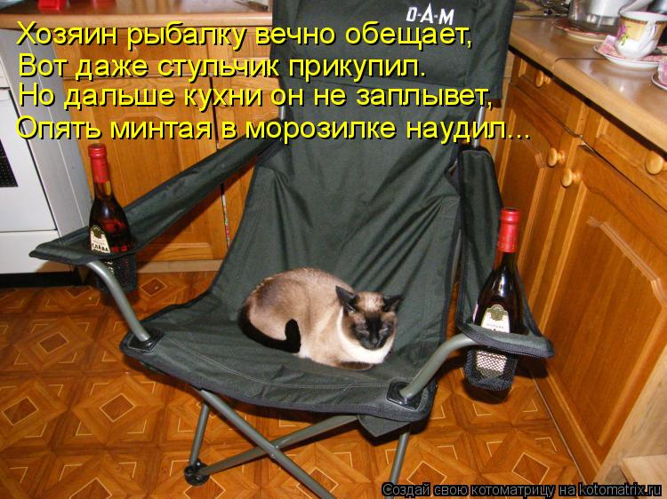 Котоматрица: Хозяин рыбалку вечно обещает, Вот даже стульчик прикупил. Но дальше кухни он не заплывет, Опять минтая в морозилке наудил...