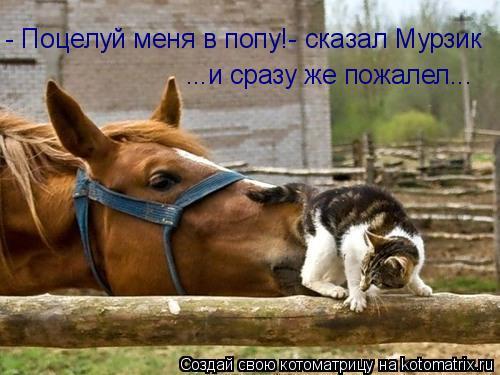 foto-potseluy-v-popku