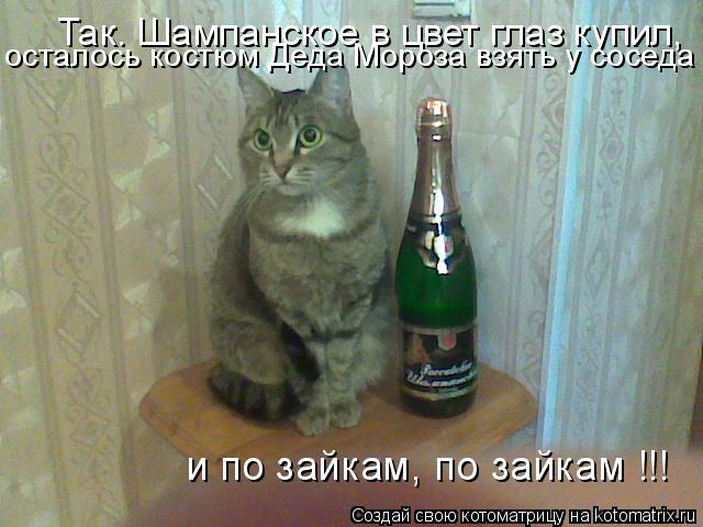Котоматрица: Так. Шампанское в цвет глаз купил, осталось костюм Деда Мороза взять у соседа и по зайкам, по зайкам !!!
