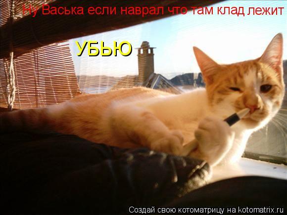 Котоматрица: Ну Васька если наврал что там клад  лежит УБЬЮ