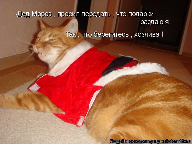 Котоматрица: -Дед Мороз , просил передать , что подарки раздаю я. Так , что берегитесь , хозяива !