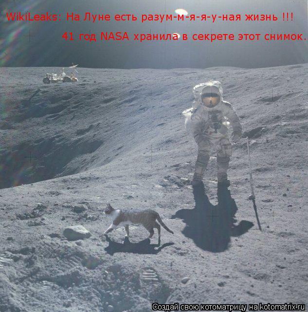 Котоматрица: WikiLeaks: На Луне есть разум-м-я-я-у-ная жизнь !!! 41 год NASA хранила в секрете этот снимок...