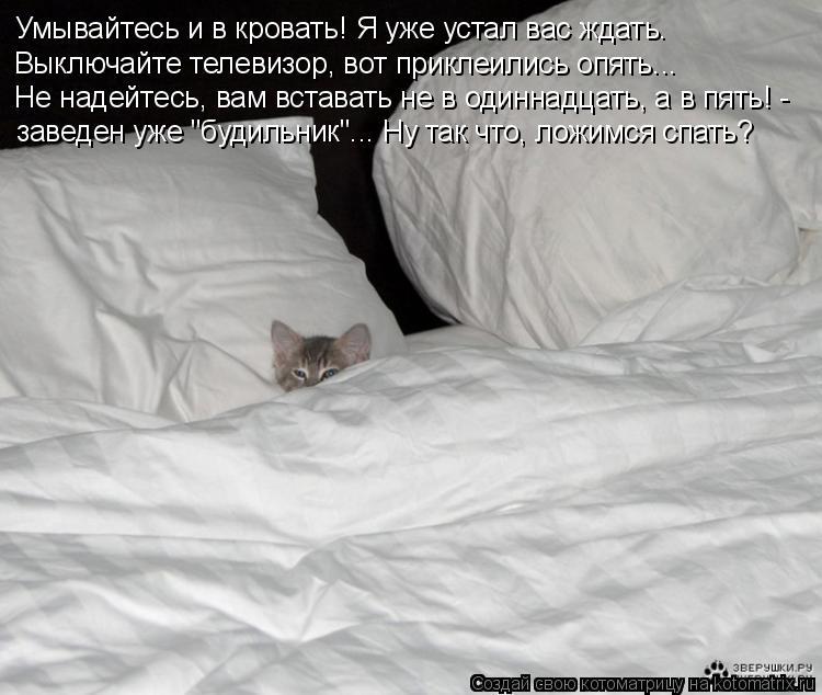 Котоматрица: Умывайтесь и в кровать! Я уже устал вас ждать. Выключайте телевизор, вот приклеились опять... Не надейтесь, вам вставать не в одиннадцать, а в