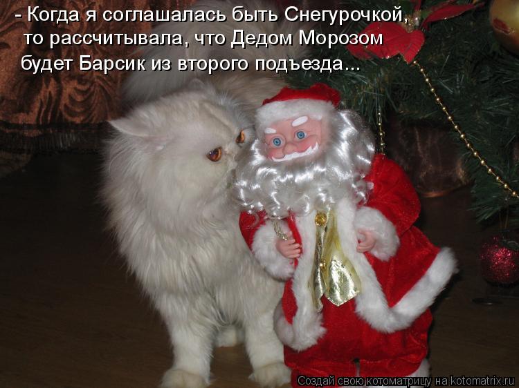 Котоматрица: - Когда я соглашалась быть Снегурочкой, то рассчитывала, что Дедом Морозом будет Барсик из второго подъезда...