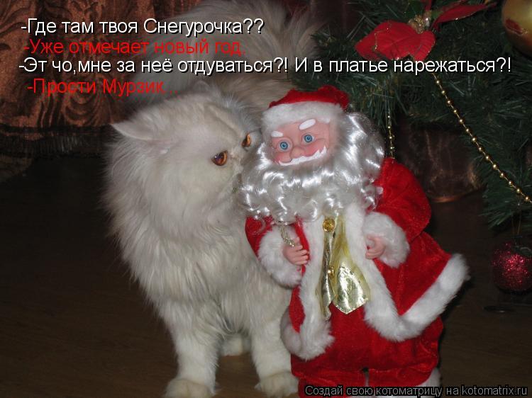 Котоматрица: -Где там твоя Снегурочка?? -Уже отмечает новый год. -Эт чо,мне за неё отдуваться?! И в платье нарежаться?! -Прости Мурзик...