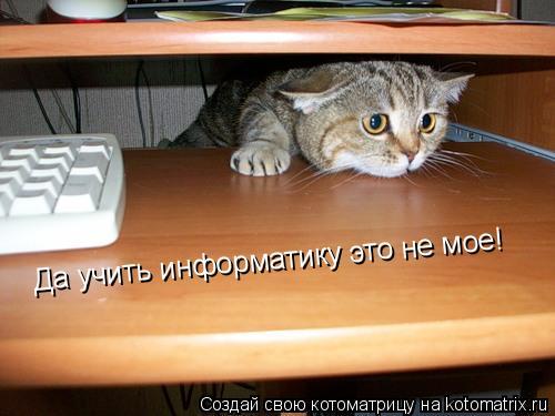 Котоматрица: Да учить информатику это не мое!