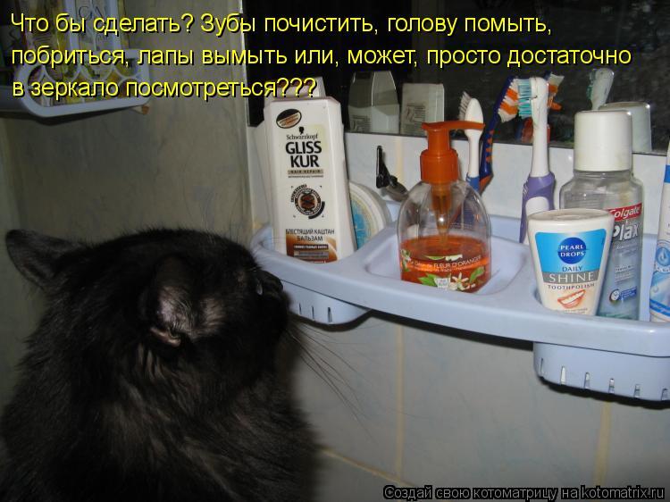 Котоматрица: Что бы сделать? Зубы почистить, голову помыть, побриться, лапы вымыть или, может, просто достаточно в зеркало посмотреться???
