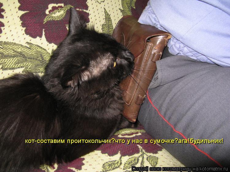 Котоматрица: кот-составим проитокольчик?что у нас в сумочке?ага!будильник!