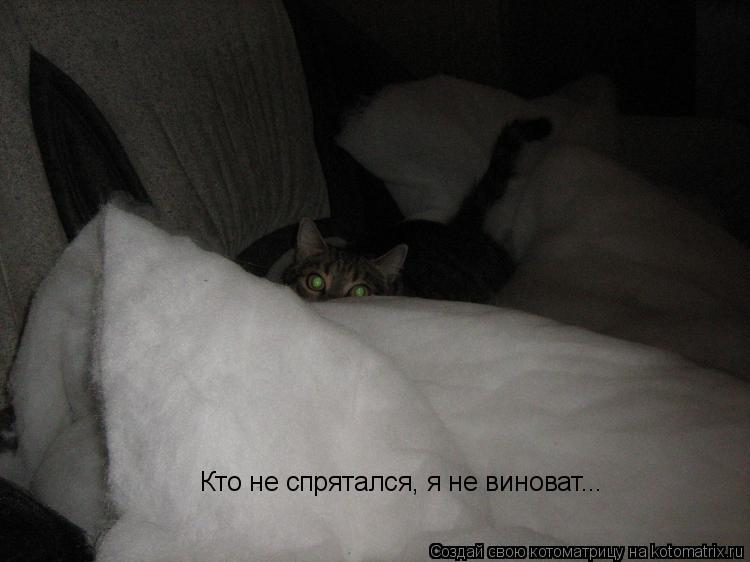 Котоматрица: Кто не спрятался, я не виноват...