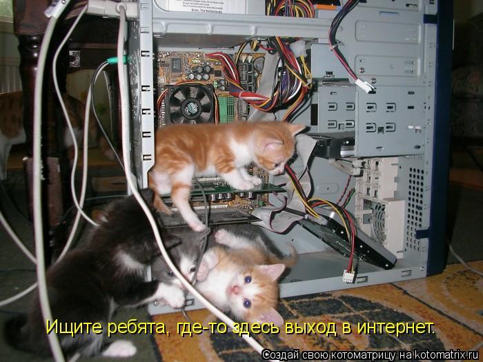 Котоматрица: Ищите ребята, где-то здесь выход в интернет.