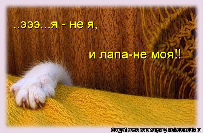 Котоматрица: ..эээ...я - не я, и лапа-не моя!!