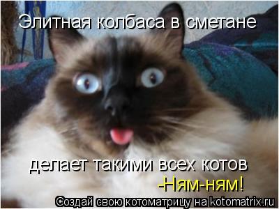Котоматрица: Элитная колбаса в сметане  делает такими всех котов  -Ням-ням!