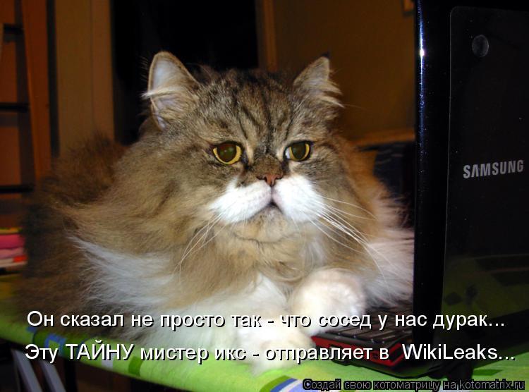 Котоматрица: Он сказал не просто так - что сосед у нас дурак... Эту ТАЙНУ мистер икс - отправляет в  WikiLeaks...