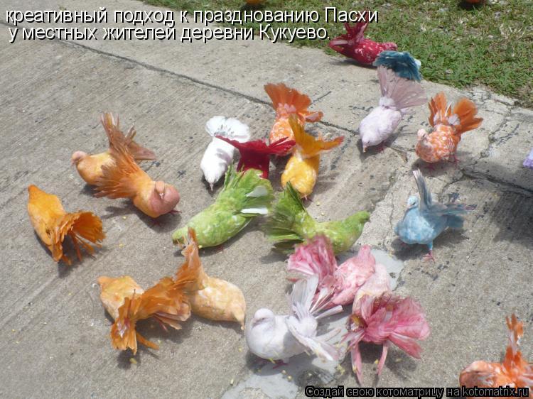 Котоматрица: креативный подход к празднованию Пасхи  у местных жителей деревни Кукуево.