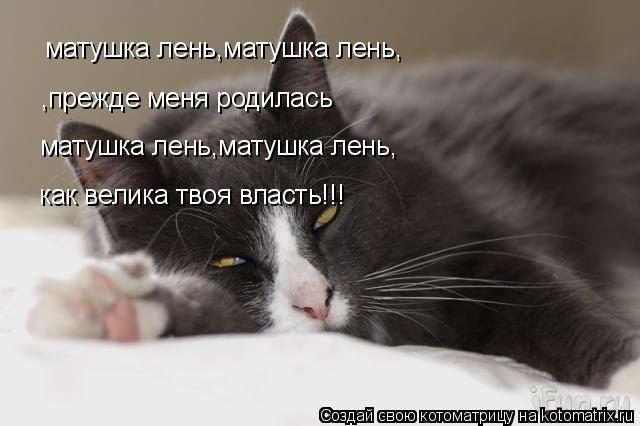 Котоматрица: матушка лень,матушка лень, ,прежде меня родилась матушка лень,матушка лень, как велика твоя власть!!!