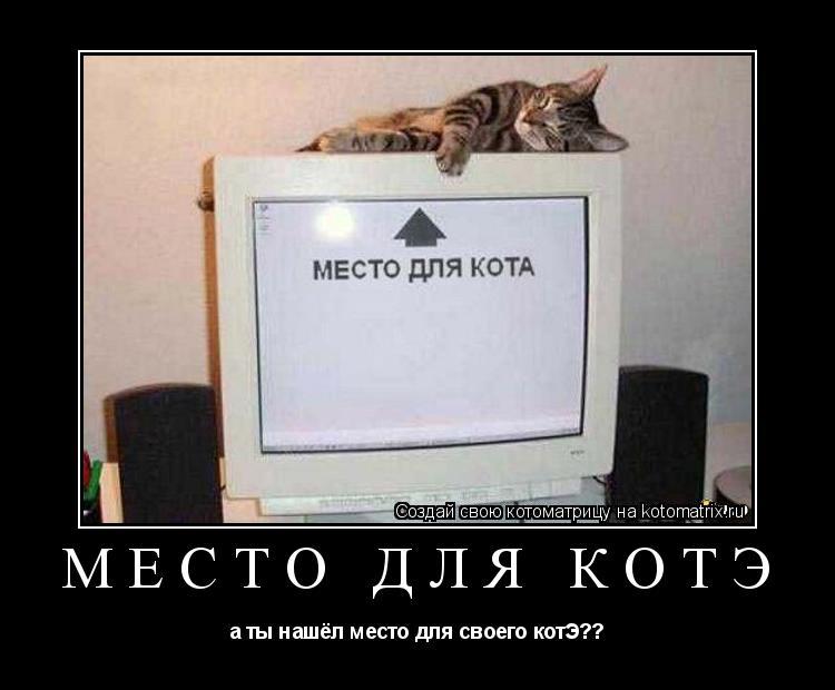 Котоматрица: место для котЭ а ты нашёл место для своего котЭ??