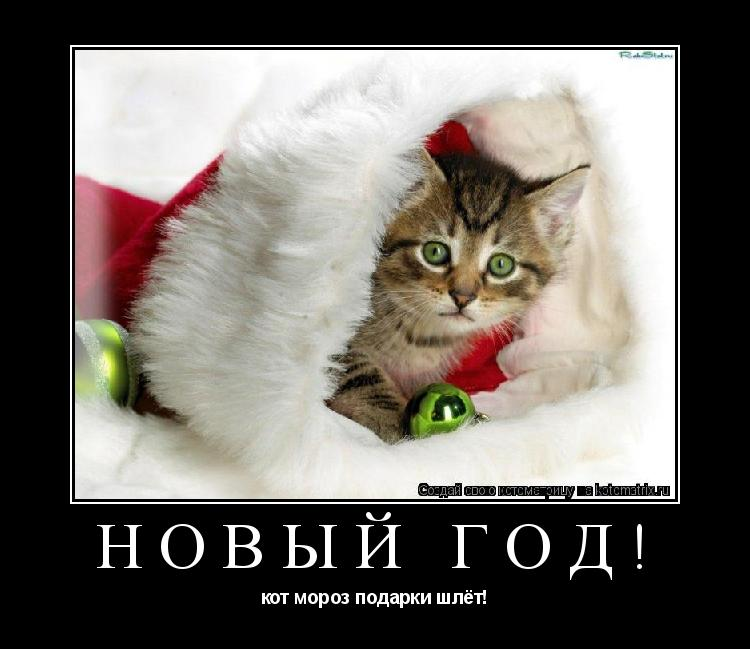 Котоматрица: новый год! кот мороз подарки шлёт!