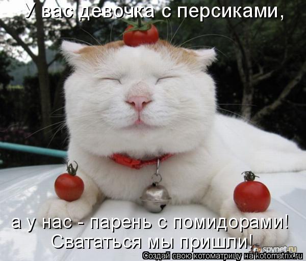 Котоматрица: У вас девочка с персиками,  а у нас - парень с помидорами! Свататься мы пришли!