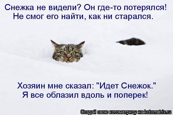 """Котоматрица: Снежка не видели? Он где-то потерялся! Не смог его найти, как ни старался. Хозяин мне сказал: """"Идет Снежок."""" Я все облазил вдоль и поперек!"""