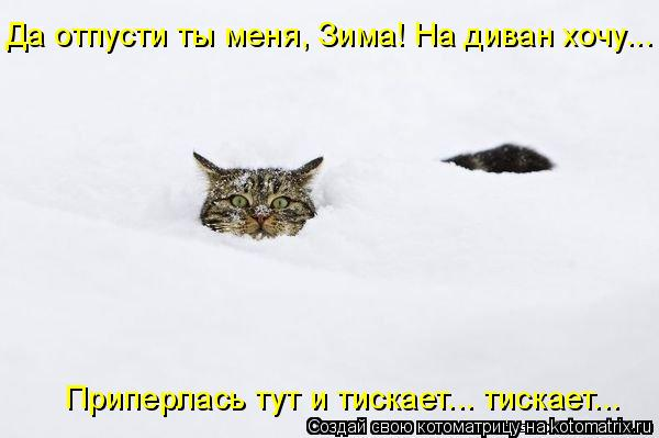 http://kotomatrix.ru/images/lolz/2010/12/11/762660.jpg