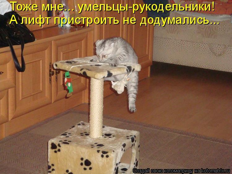 Котоматрица: Тоже мне... умельцы-рукодельники! А лифт пристроить не додумались...