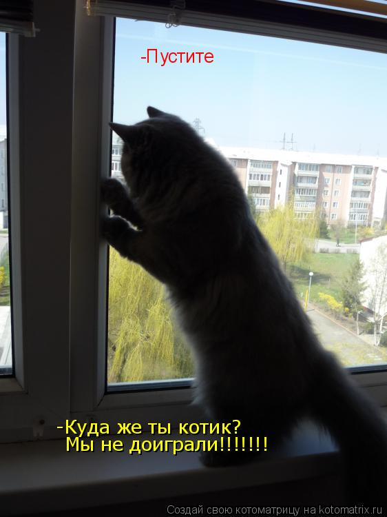 Котоматрица: -Пустите -Куда же ты котик? Мы не доиграли!!!!!!!