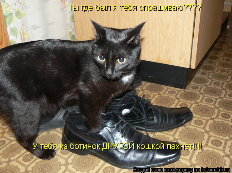 Котоматрица: Ты где был я тебя спрашиваю???? У тебя из ботинок ДРУГОЙ кошкой пахнет!!!!