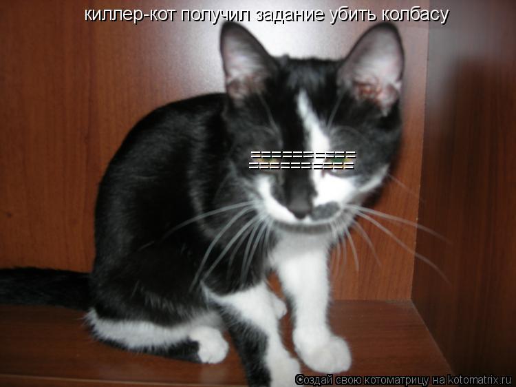 Котоматрица: киллер-кот получил задание убить колбасу ========== ==========