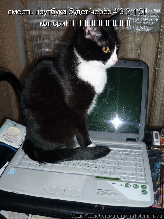 Котоматрица: смерть ноутбука будет через 4 3 2 1 0!! кот сри!!!!!!!!!!!!!!!!!!!!!!!!!!!!