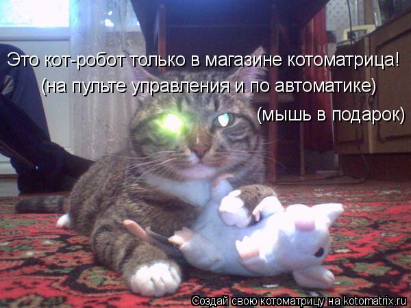 Котоматрица: Это кот-робот только в магазине котоматрица! (на пульте управления и по автоматике)  (мышь в подарок)