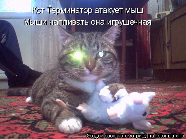 Котоматрица: Кот Терминатор атакует мыш Мыши напливать она игрушечная