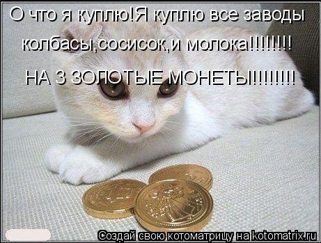 Котоматрица: О что я куплю!Я куплю все заводы колбасы,сосисок,и молока!!!!!!!! НА 3 ЗОЛОТЫЕ МОНЕТЫ!!!!!!!!