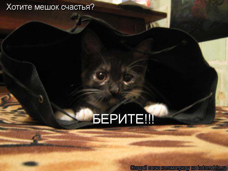 Котоматрица: Хотите мешок счастья? БЕРИТЕ!!!