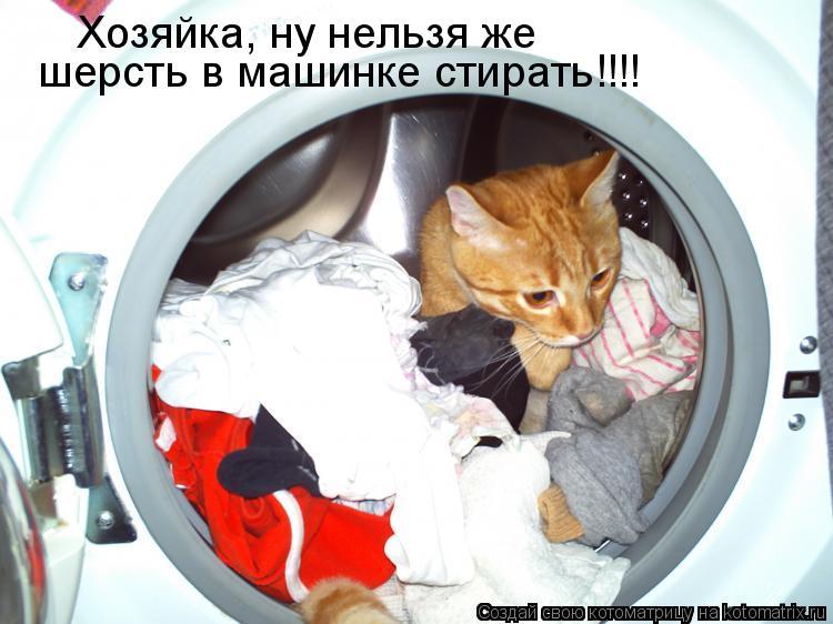 Котоматрица: шерсть в машинке стирать!!!! Хозяйка, ну нельзя же