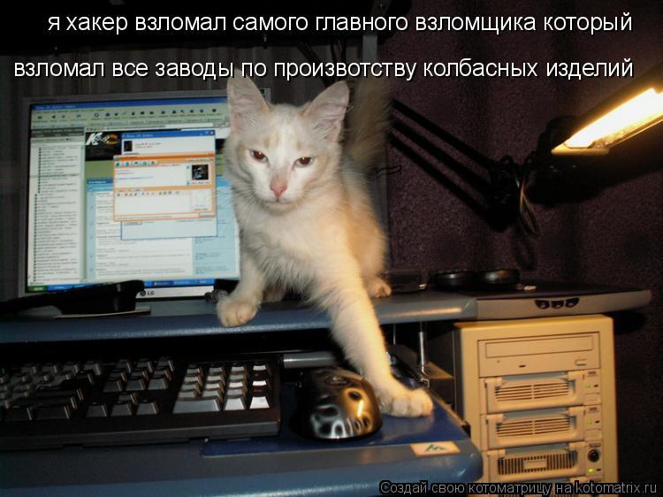 Котоматрица: я хакер взломал самого главного взломщика который взломал все заводы по произвотству колбасных изделий