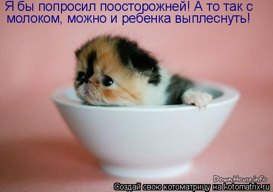 Котоматрица: Я бы попросил поосторожней! А то так с   молоком, можно и ребенка выплеснуть!