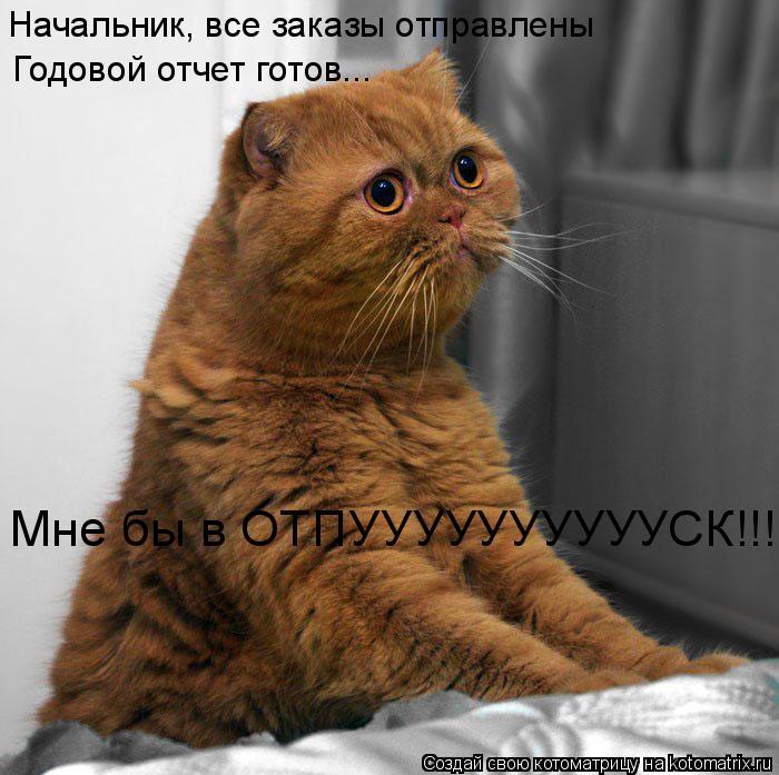 Котоматрица: Начальник, все заказы отправлены Годовой отчет готов... Мне бы в ОТПУУУУУУУУУУСК!!!