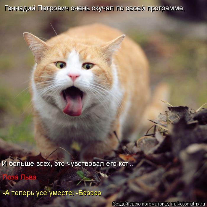 Котоматрица: Геннадий Петрович очень скучал по своей программе, И больше всех, это чувствовал его кот... Поза Льва -А теперь усе уместе: -Бэээээ