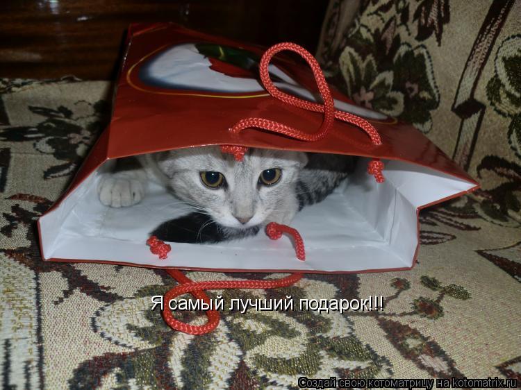 Котоматрица: Я самый лучший подарок!!!