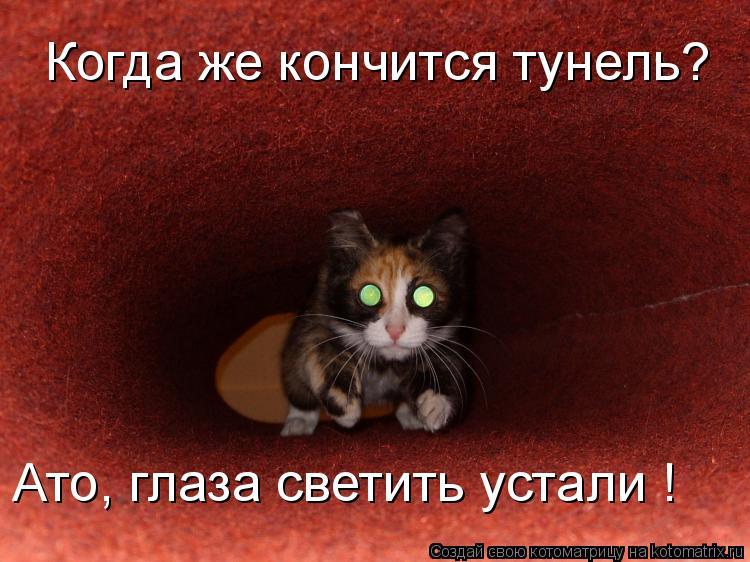 Котоматрица: Когда же кончится тунель? Ато, глаза светить устали !
