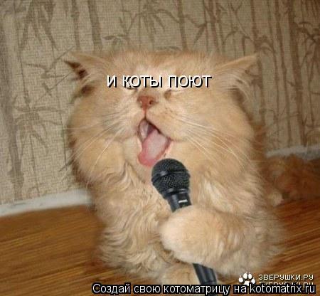 Котоматрица: и коты поют